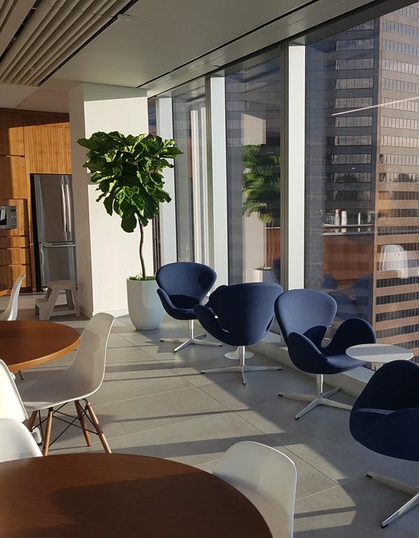 Greenery Office Interiors CalgaryLive Plants banner photo